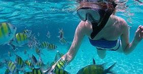 Shipwreck & Coral Reef Snorkel Combo