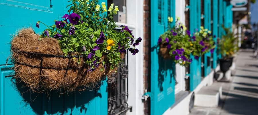 Wunderschöne Gebäude auf Ihrer Kreuzfahrt nach New Orleans