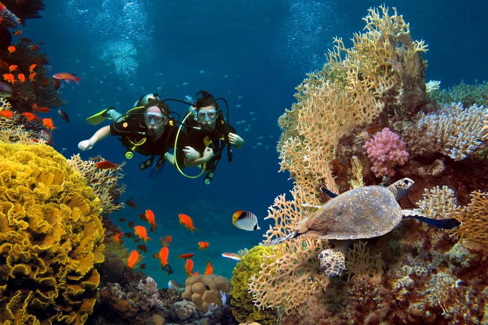 Try SCUBA Diving in Bermuda on a Cruise with Norwegian
