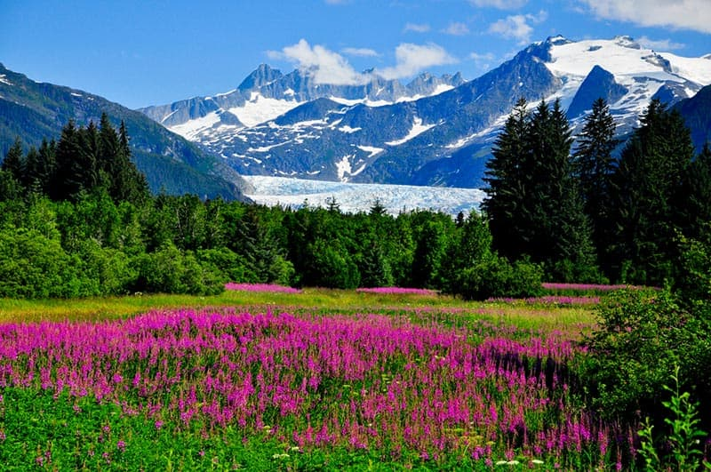 See Mendenhall Glacier on a Cruise to Alaska with Norwegian