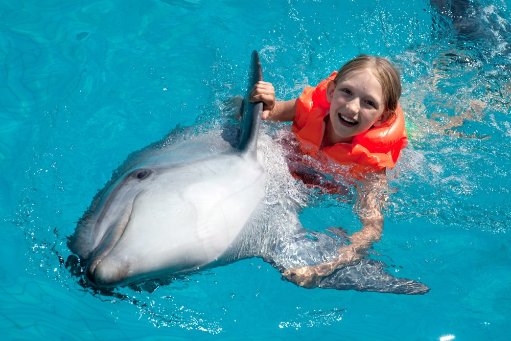 Top Caribbean Shore Excursions for Families