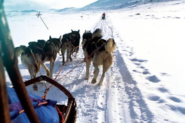 Cruising Alaska: When the Last Frontier Calls