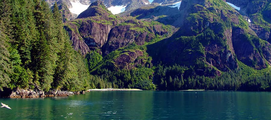 Resurrection Bay on your Alaska cruise