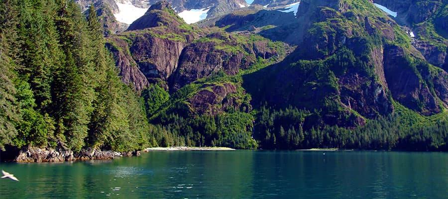 Resurrection Bay on your Alaska cruise