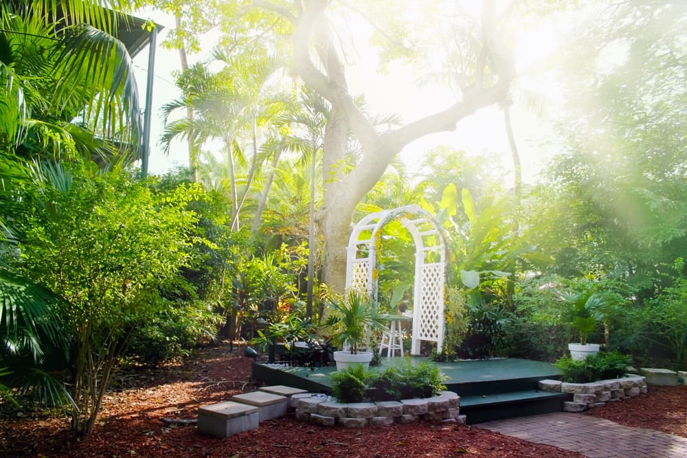 Visit the Ernest Hemingway Home on a Cruise to Key West