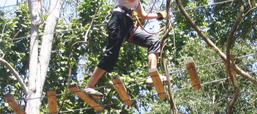 Canopy Adventure on your Mexican Riviera cruise