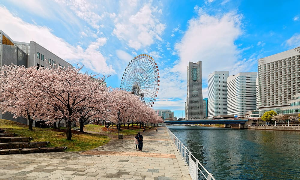 Cruises from Seattle: Yokohama, Japan with Norwegian