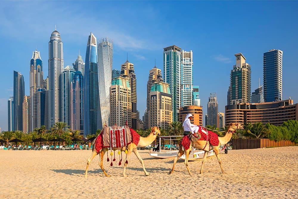 Dubai Cruise - Norwegian