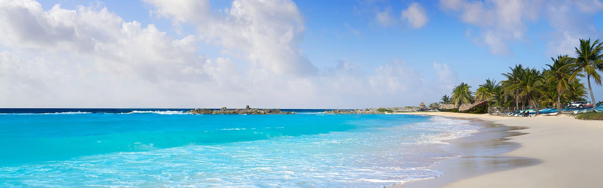 האיים הקריביים: קוסומלוקוסטהמאיה