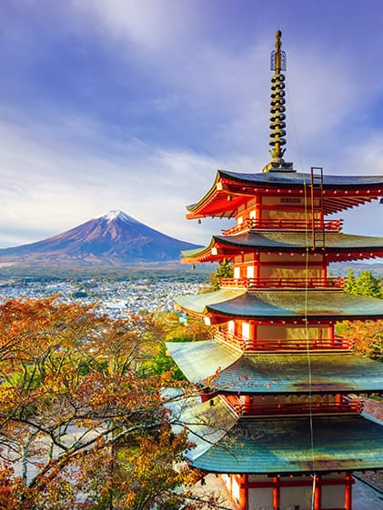 Beautiful Pagoda overlooking Mt. Fuji