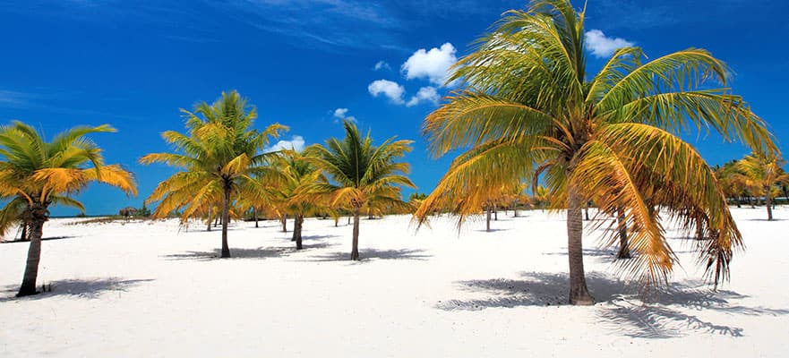 13-Day Southern Caribbean from Boston - Fly & Cruise