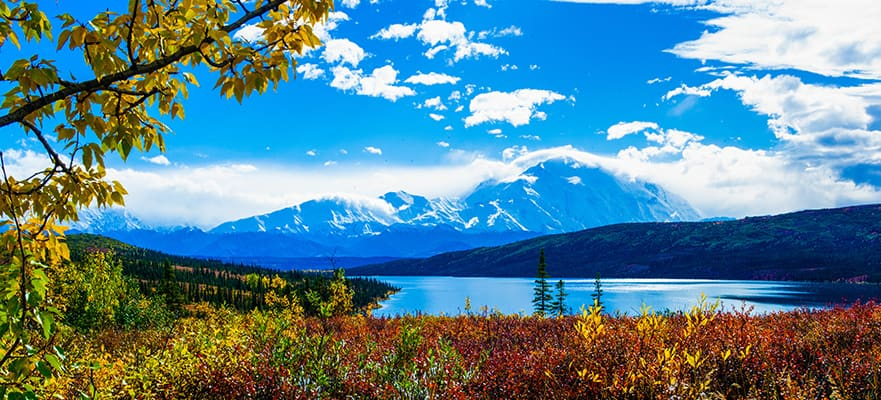 14-Day Denali-Valdez Explorer - Southbound Cruise Tour