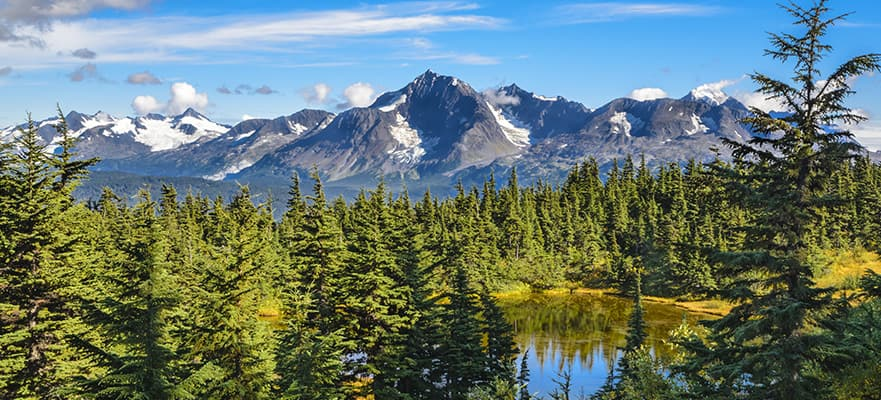 11-Day Fairbanks Denali Express - Northbound Cruise Tour