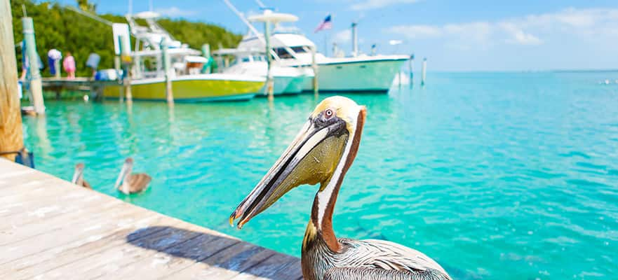 4-Day Bahamas from Miami - Fly & Cruise