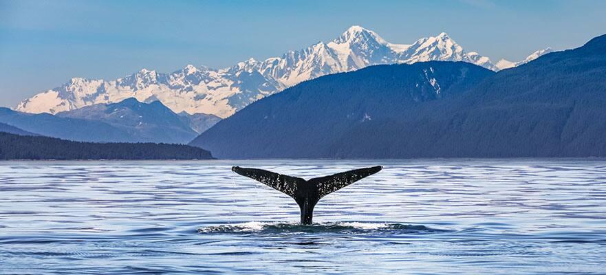 7-Day Alaska Round-trip Seattle: Juneau, Ketchikan & Victoria
