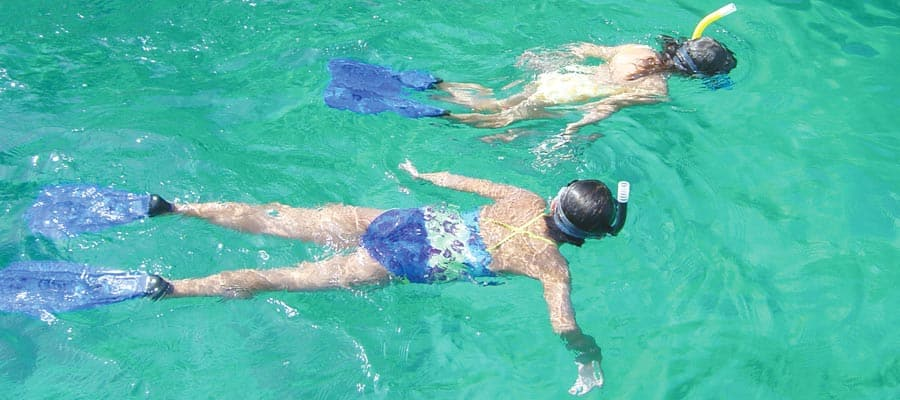 Captains Choice Snorkel Excursion on your Mexican Riviera cruise