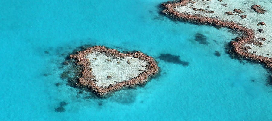 Heart reef on your Airlie Beach Cruise