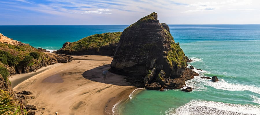 Piha Beach on a cruise to Auckland
