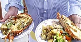 Catamaran & Lobster Lunch Cruise
