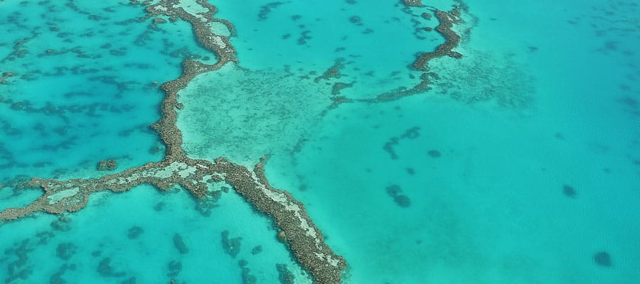 Great Barrier Reef on an Australia cruise