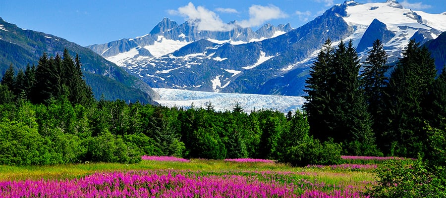 Visit the Stunning Mendenhall Glacier on a Alaska Cruise