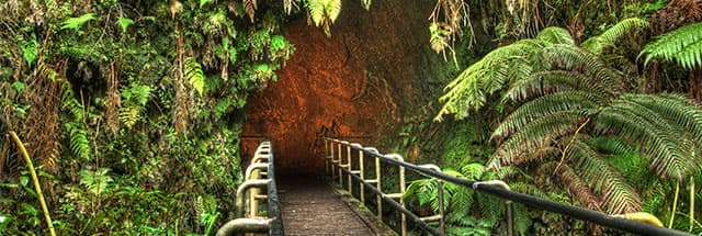 Entrance to Thurston Lava Tube