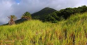 Hike to Souffa Stone Mountain