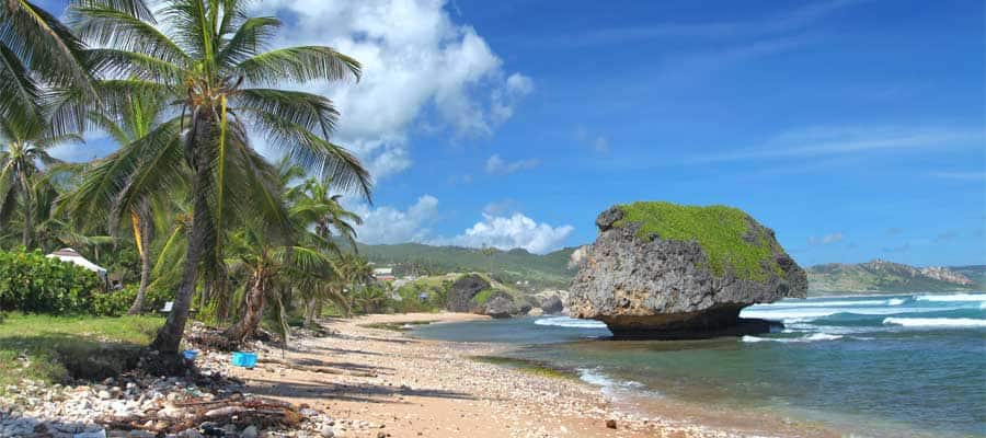 Bask in the sun on a palm-fringed beach on your Caribbean cruise