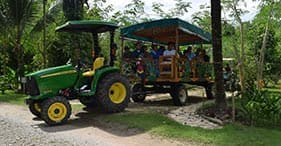 Spice Farm & Botanical Gardens