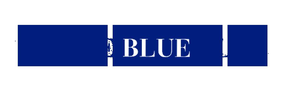 VeniceBlue Flag