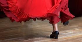 Vieille ville de Cadix et flamenco