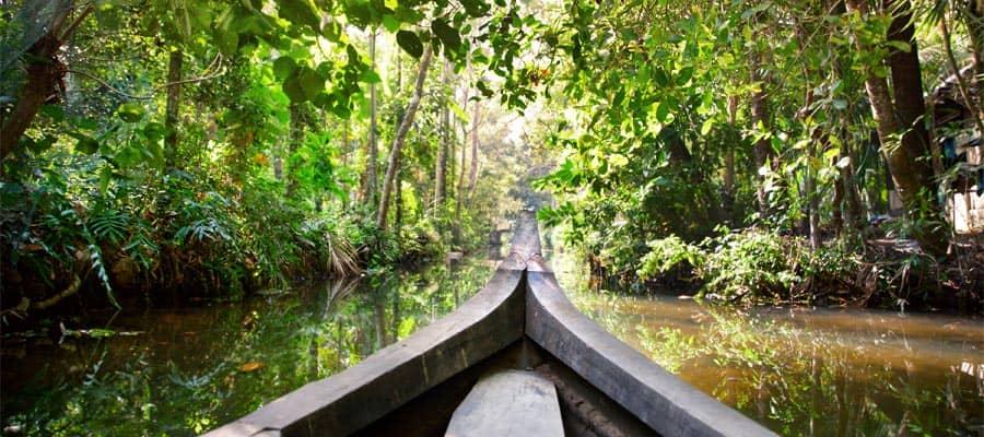 Paseo en bote de madera en cruceros por Cochin
