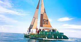 Catamaran Cruise & Snorkel