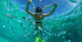 Beach Snorkel Adventure