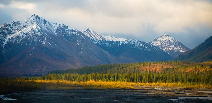 11-Day Fairbanks Denali Express - Southbound Cruise Tour