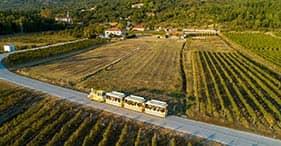 Konavle Wine Train