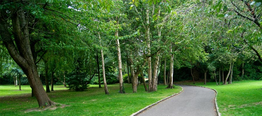 Trail through Merrion Square Park on your Ireland vacation