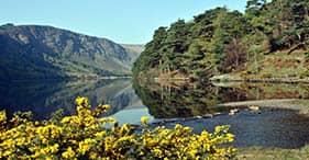 Campagna irlandese e Glendalough