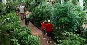 Key West Aquarium y Butterfly Gardens
