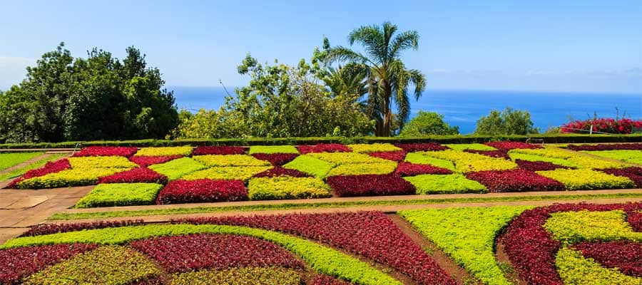 Visit the Funchal Gardens whilst in Portugal on your Transatlantic cruise