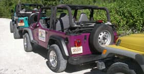 Safari Jeep aux Bahamas