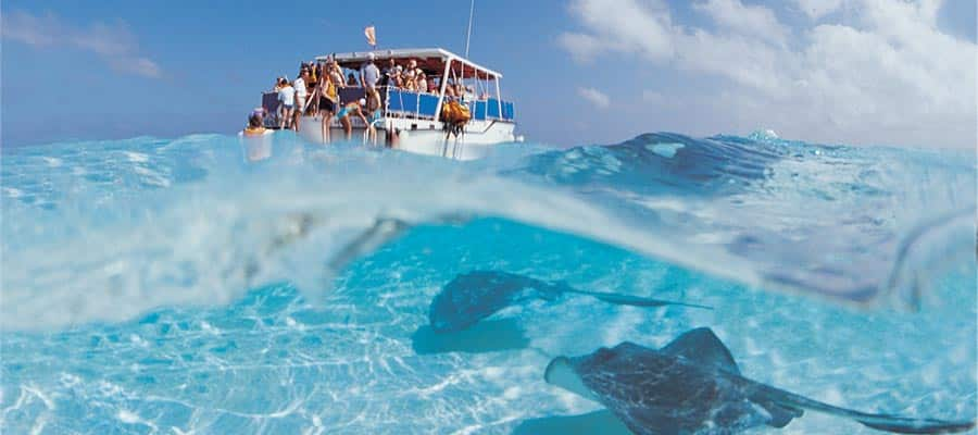 Banco de arena Stingray City en tu crucero por George Town