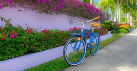 Cayman Bicycle Adventure