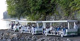 Forest Tram & Tribal Dance
