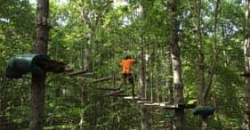 Treetop Adventure Park und Zipline-Kurs