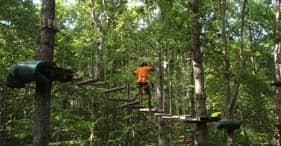 Treetop Adventure Park & Zipline Course