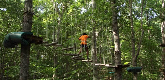 Icy Strait Point, Alaska Treetop Adventure Park & Zipline