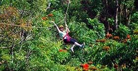 Rainforest Zipline & Waterfall