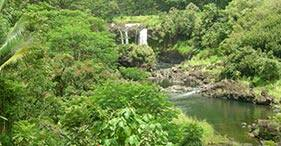 הילו, הוואי