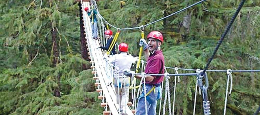 Canopy ziplining on an alaska cruise